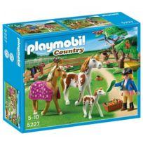 Playmobil chevaux poney